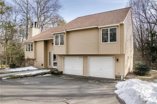 161 Mountain Road, Hartland, CT 06027 (MLS #170162913) :: Anytime Realty