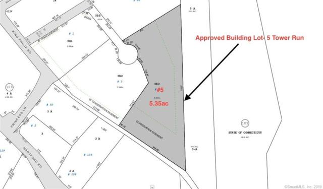 5 Tower Run, Simsbury, CT 06070 (MLS #170168999) :: Anytime Realty
