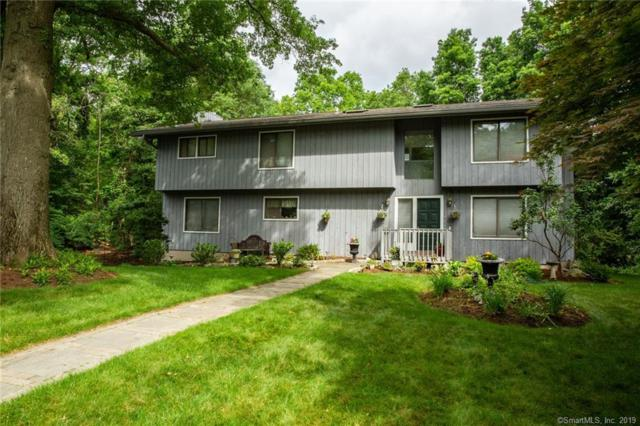 6 Queens Gate, Norwalk, CT 06851 (MLS #170171470) :: Carbutti & Co Realtors
