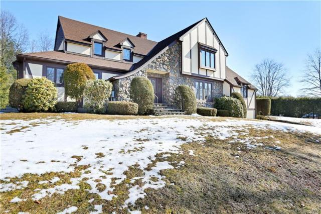 53 Mary Violet Road, Stamford, CT 06907 (MLS #170172397) :: The Higgins Group - The CT Home Finder
