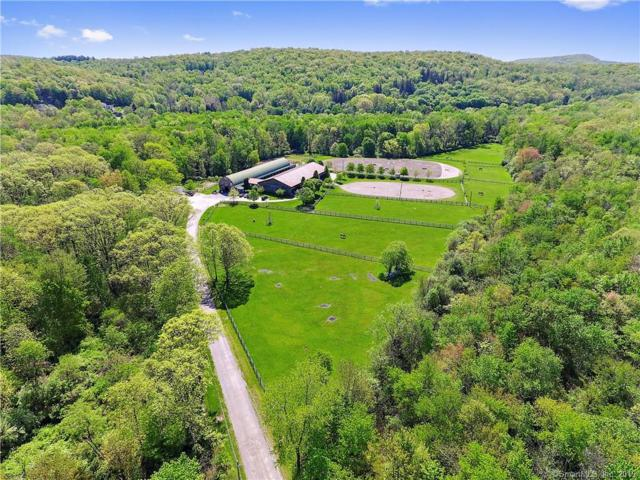 220 Doansburg, Brewster, NY 10509 (MLS #170174207) :: The Higgins Group - The CT Home Finder
