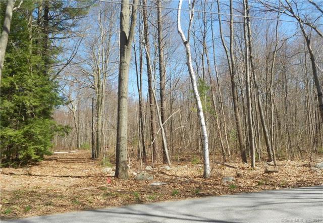 57 Fenn Road, Litchfield, CT 06759 (MLS #170180912) :: Mark Boyland Real Estate Team