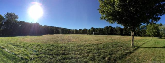 3 Lower Meadow, Granby, CT 06090 (MLS #170181666) :: The Higgins Group - The CT Home Finder
