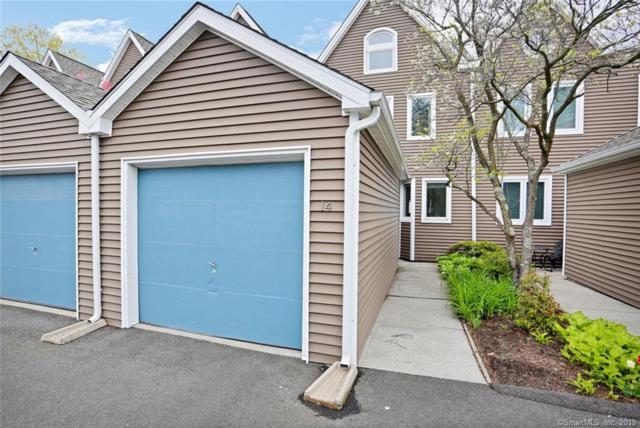 566 Newfield Avenue #14, Stamford, CT 06905 (MLS #170185427) :: Carbutti & Co Realtors