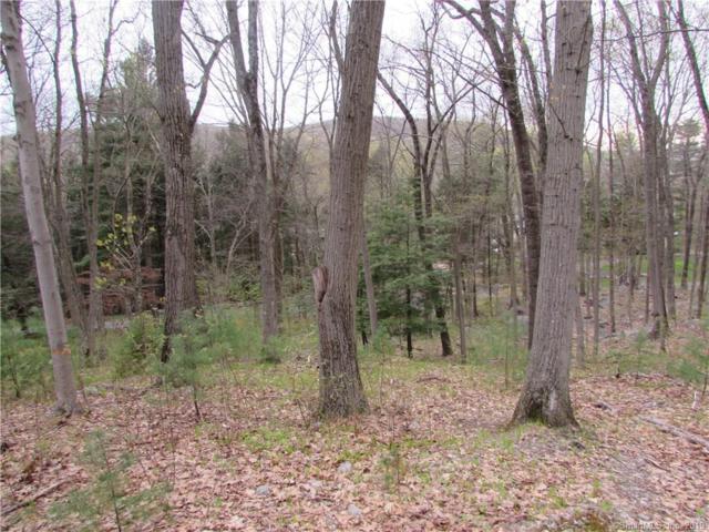 40 Turkey Plain Road, Bethel, CT 06801 (MLS #170188059) :: Mark Boyland Real Estate Team