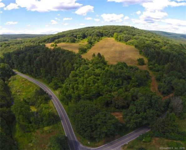 00 Old Route 22, North East, NY 12546 (MLS #170195624) :: Carbutti & Co Realtors