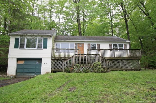 53 Lakeside Drive, Ridgefield, CT 06877 (MLS #170195860) :: The Higgins Group - The CT Home Finder