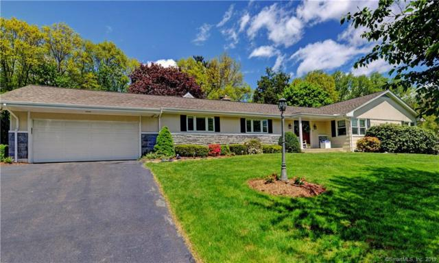 51 Bonnie View Drive, Trumbull, CT 06611 (MLS #170196452) :: The Higgins Group - The CT Home Finder