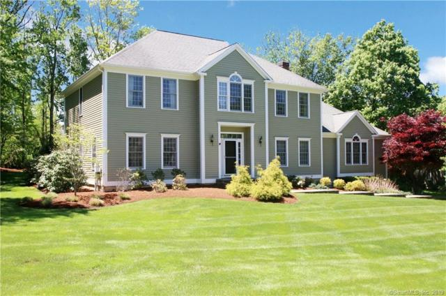 28 Mountain Manor Road, Newtown, CT 06482 (MLS #170196589) :: Carbutti & Co Realtors