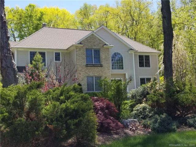 12 Plum Tree Lane, Shelton, CT 06484 (MLS #170196913) :: GEN Next Real Estate