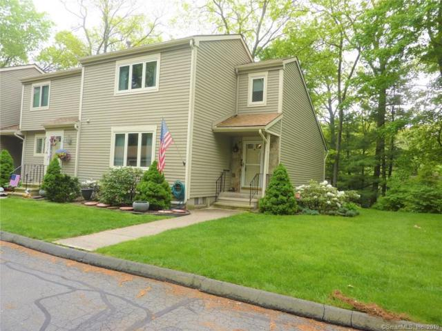 241 Snow Owl Drive #241, Southington, CT 06489 (MLS #170197108) :: Hergenrother Realty Group Connecticut