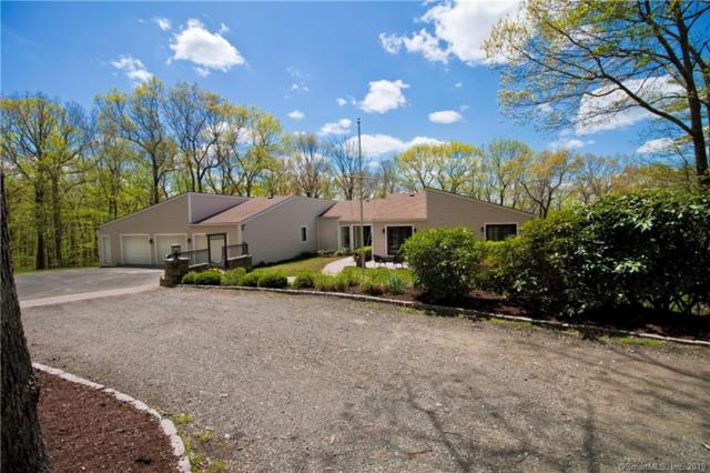 48A Great Ring Road, Newtown, CT 06482 (MLS #170197399) :: Carbutti & Co Realtors