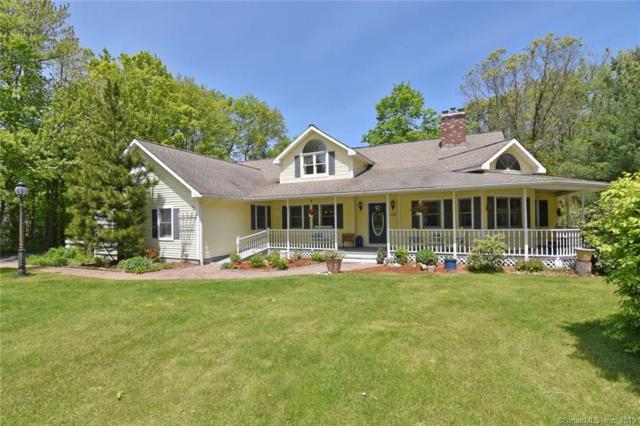 177 Lake Drive, East Hampton, CT 06424 (MLS #170198819) :: Spectrum Real Estate Consultants