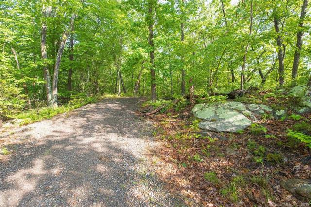 90 Deep River Road, Essex, CT 06409 (MLS #170201218) :: The Higgins Group - The CT Home Finder