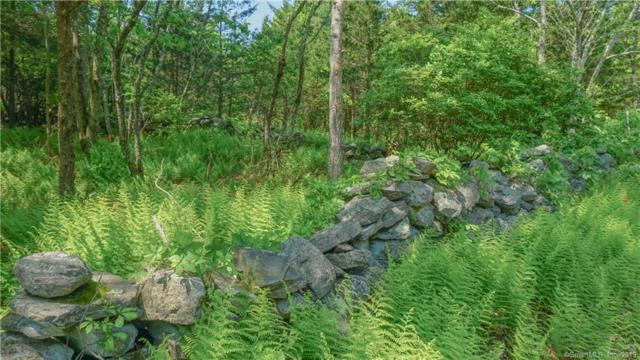 Lot 1 Cooktown Road, Preston, CT 06365 (MLS #170202156) :: The Higgins Group - The CT Home Finder