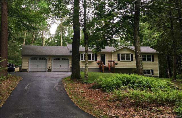 57 Hi View Road, Hartland, CT 06091 (MLS #170207393) :: Michael & Associates Premium Properties | MAPP TEAM