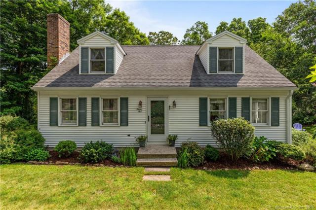 95 Saddle Hill Drive, Guilford, CT 06437 (MLS #170209418) :: Carbutti & Co Realtors