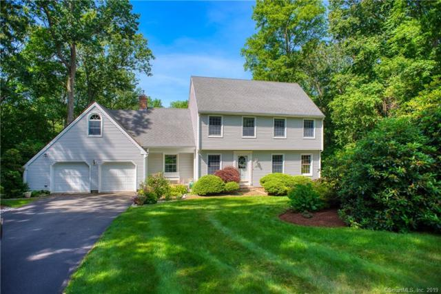 25 Oakledge Drive, Essex, CT 06442 (MLS #170211634) :: Mark Boyland Real Estate Team