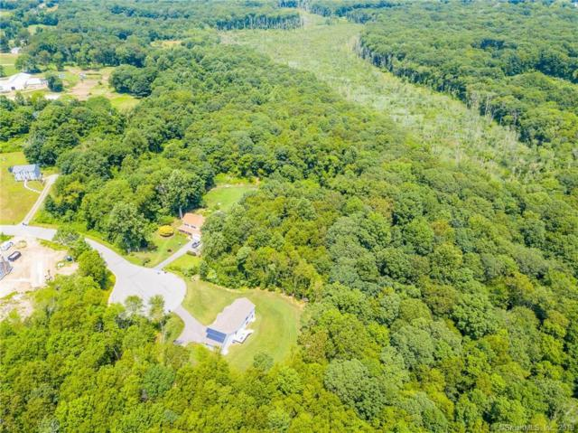 9 Applewood Drive, Ledyard, CT 06339 (MLS #170212819) :: The Higgins Group - The CT Home Finder