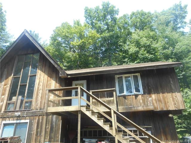 207 E Hartland Road, Barkhamsted, CT 06063 (MLS #170213237) :: The Higgins Group - The CT Home Finder