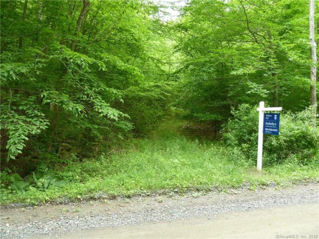 177 E Flag Swamp Road, Roxbury, CT 06783 (MLS #170213823) :: GEN Next Real Estate