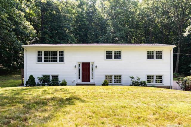 111 Skylark Drive, North Branford, CT 06472 (MLS #170215872) :: Mark Boyland Real Estate Team