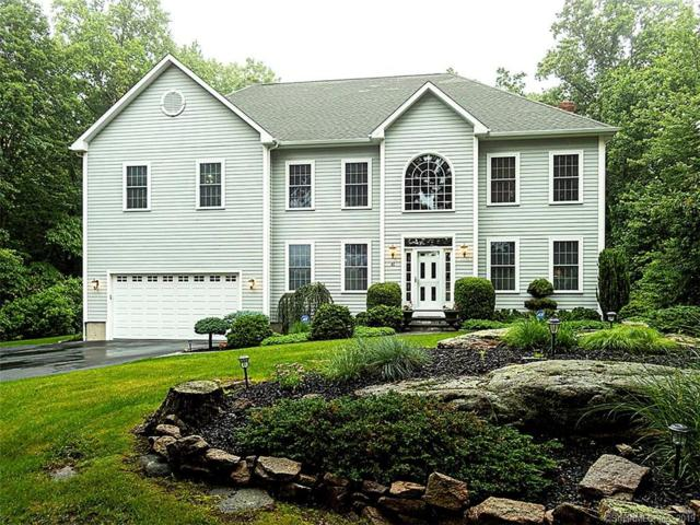 61 Hoop Pole Lane, East Haven, CT 06512 (MLS #170217063) :: Michael & Associates Premium Properties | MAPP TEAM
