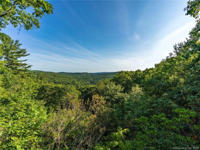 300 Music Mountain Road, Canaan, CT 06031 (MLS #170218060) :: Mark Boyland Real Estate Team