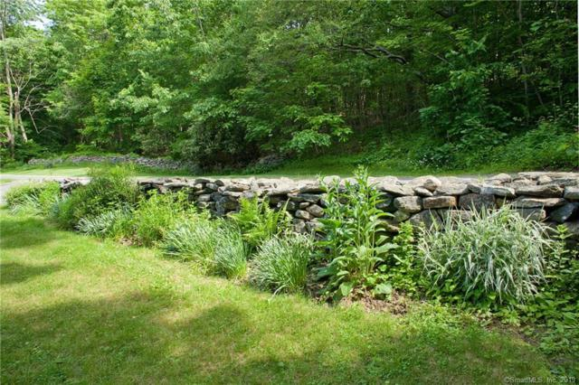 28 Fuller Road, Barkhamsted, CT 06063 (MLS #170220478) :: Carbutti & Co Realtors