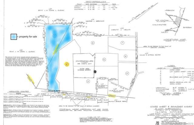 1 Lake Road, Lebanon, CT 06237 (MLS #170221826) :: Carbutti & Co Realtors