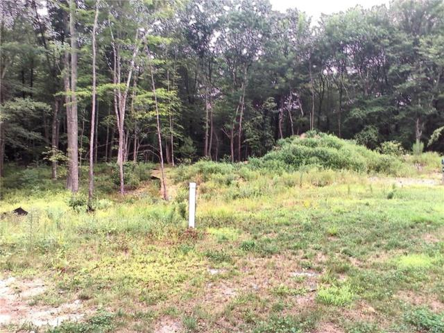52 Saw Mill, Burlington, CT 06013 (MLS #170225080) :: Mark Boyland Real Estate Team