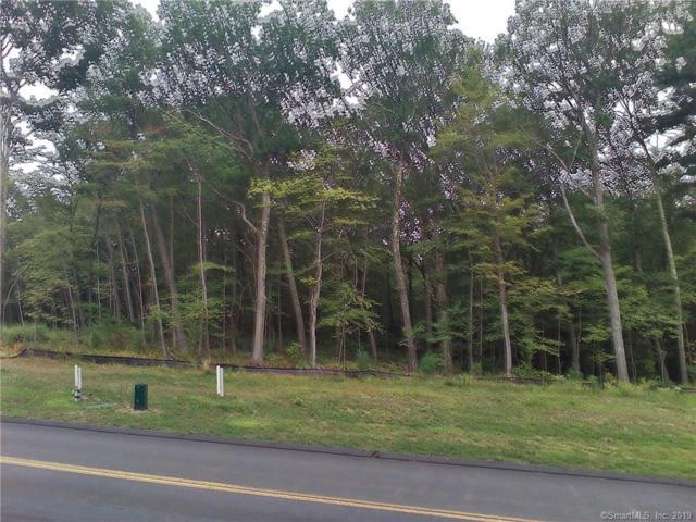 56 Saw Mill, Burlington, CT 06013 (MLS #170225082) :: GEN Next Real Estate