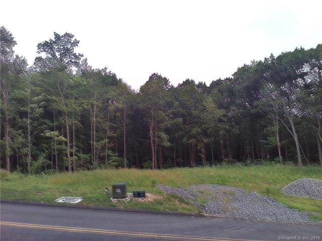 60 Saw Mill, Burlington, CT 06013 (MLS #170225085) :: Mark Boyland Real Estate Team