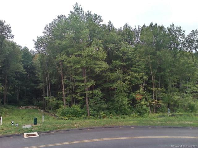 64 Saw Mill, Burlington, CT 06013 (MLS #170225088) :: Mark Boyland Real Estate Team