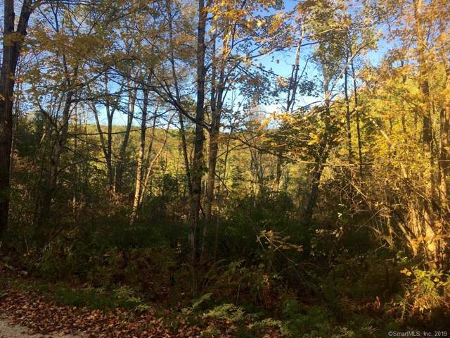0 Cross To Canaan Valley Road, New Marlborough, MA 01259 (MLS #170242265) :: Sunset Creek Realty