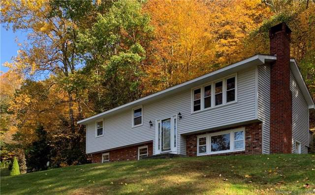 16 Johnson Road, Canaan, CT 06031 (MLS #170245993) :: Carbutti & Co Realtors