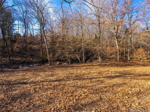 1 Lesh Lane, New Milford, CT 06776 (MLS #170247774) :: Kendall Group Real Estate | Keller Williams