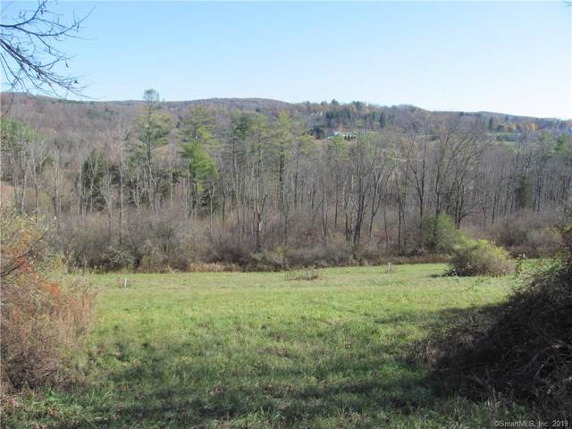 0 Sharon Valley Road, Sharon, CT 06069 (MLS #170249692) :: The Higgins Group - The CT Home Finder