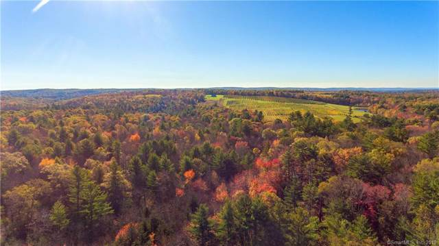 138 Boyer Road, Stafford, CT 06076 (MLS #170250983) :: Anytime Realty