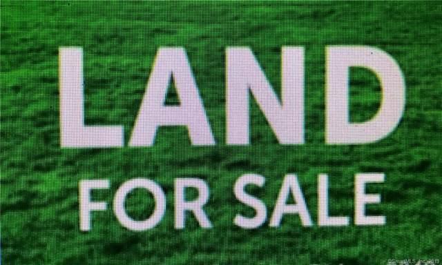 511 Gertrude Way, Killingly, CT 06239 (MLS #170255024) :: Mark Boyland Real Estate Team