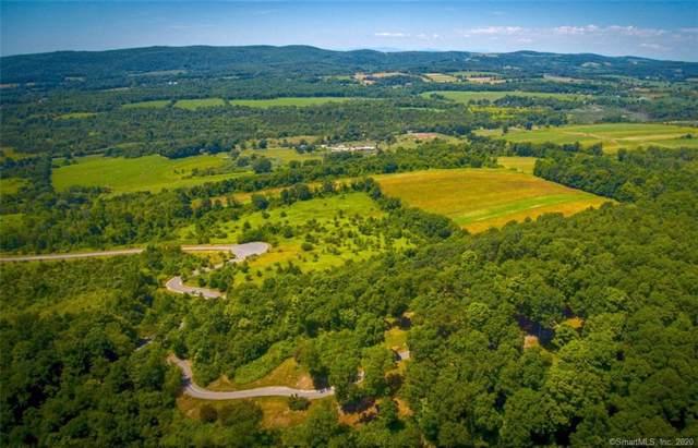 108 Westerly Ridge Drive, Amenia, NY 12501 (MLS #170264305) :: Carbutti & Co Realtors