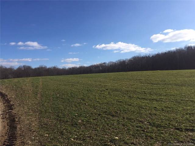 Lot 5 Finn Lane, Plainfield, CT 06374 (MLS #170266386) :: Anytime Realty