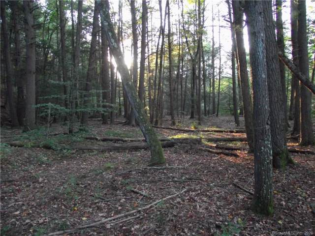 Lot 17 Shailor Hill Road, Colchester, CT 06415 (MLS #170268905) :: The Higgins Group - The CT Home Finder