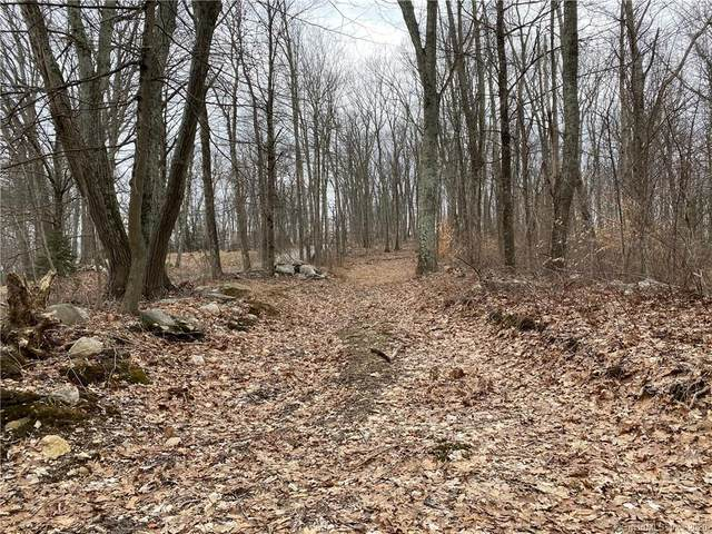 LOT 4 Shoddy Mill Road, Andover, CT 06232 (MLS #170272716) :: Around Town Real Estate Team