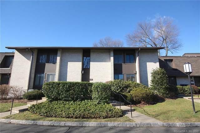 247 Hamilton Avenue #7, Stamford, CT 06902 (MLS #170273495) :: Carbutti & Co Realtors