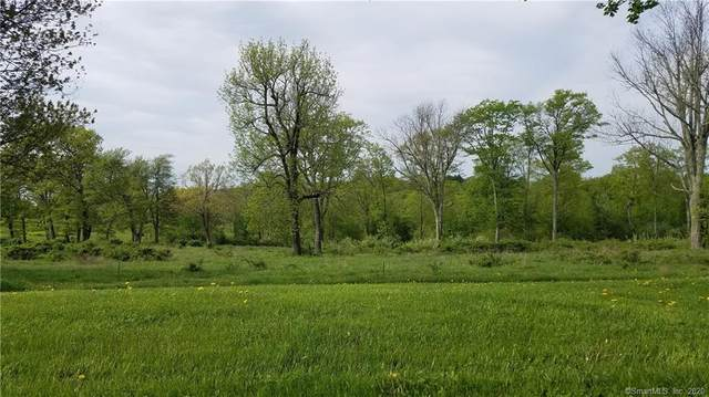 23 Mountain Top/ Lot 369 Pass, Burlington, CT 06013 (MLS #170280997) :: Hergenrother Realty Group Connecticut