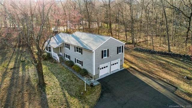 19 Pumpkin Lane, Norwalk, CT 06851 (MLS #170286219) :: Spectrum Real Estate Consultants