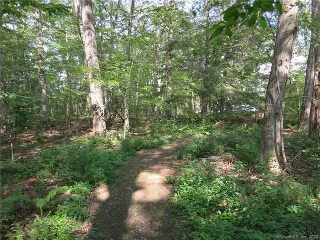 40 Gardner Lake Heights, Salem, CT 06420 (MLS #170291535) :: Spectrum Real Estate Consultants