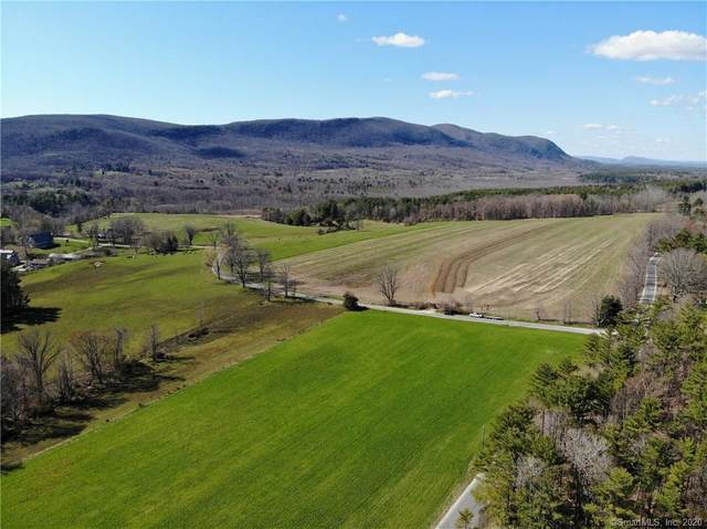 0000 Taconic Road, Salisbury, CT 06068 (MLS #170291966) :: Around Town Real Estate Team