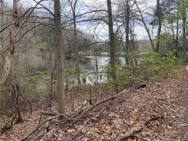 LOT 7 Sheepskin Hollow Road S, East Haddam, CT 06423 (MLS #170295172) :: Team Feola & Lanzante | Keller Williams Trumbull